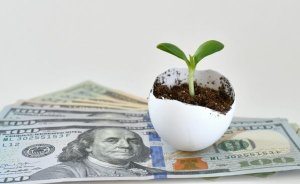 Nest egg financial growth